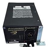XCEL DPI 24V 20A High Frequency On Board Fork