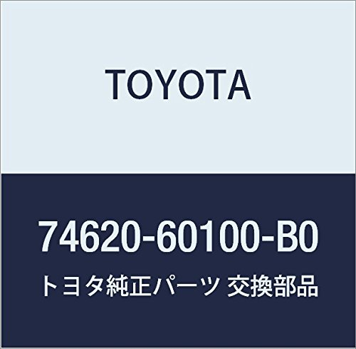 Toyota 74620-60100-B0 Assist Grip Assembly