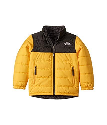 (The North Face Kids Boy's Reversible Mount Chimborazo Jacket (Little Kids/Big Kids) TNF Yellow X-Large)