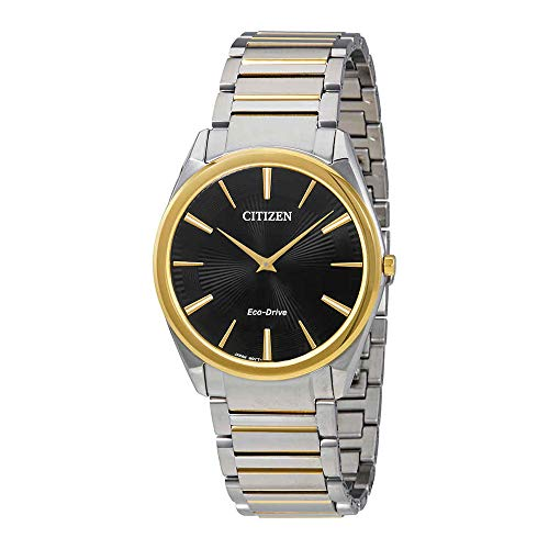 Citizen Watches Men's AR3074-54E Eco-Drive Two-Tone One Size ()