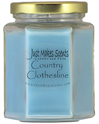 Country Clothesline (Downy type) Scented Blended Soy Candle | Fresh Clean Laundry Fragrance | Hand Poured in the USA by Just Makes -