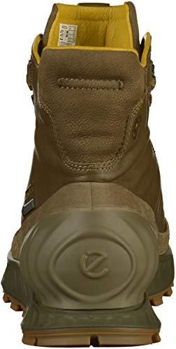 ECCO Men's Exostrike Gore-tex Hiking Shoe