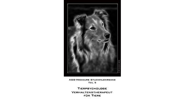 Bachblütentherapeut für Tiere Teil 4 ASS-Medikurs Studienlehrgang (German Edition)