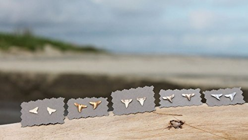 shark-tooth-stud-earrings-gold-silver-white-made-in-charleston-sc
