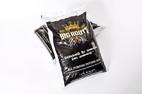Big Rootz All Purpose Potting Soil