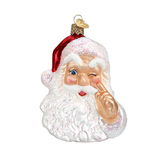 (Old World Christmas Ornaments: Night Before Christmas Santa Glass Blown Ornaments for Christmas Tree )
