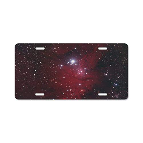 (YEX Cone and Asteroids License Plate Frame with 4 Holes Novelty Car Licence Plate Covers Tag Sign 12