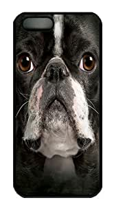 Big Face Boston Terrier PC Case Cover for iPhone 5 and iPhone 5s Black