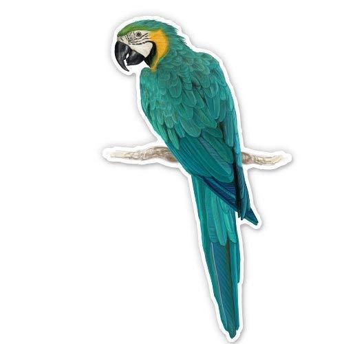 - Carframes18 Blue and Yellow Macaw Vinyl Sticker - Car Window Bumper Laptop Bumper Sticker Decal