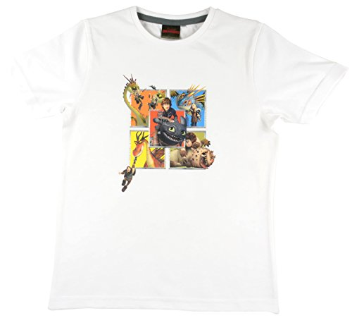 Dragons DreamWorks T-shirt voor kinderen met drakenruiters en draak, wit
