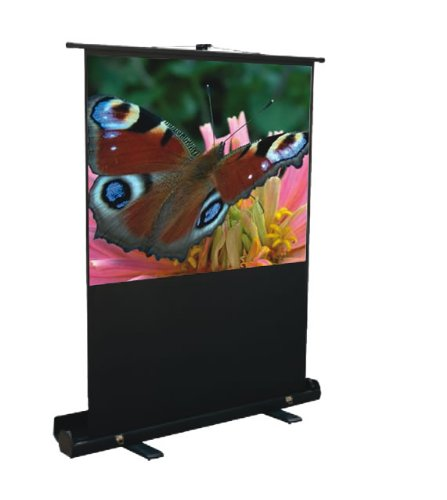 Mustang SC-P80D4:3 80-Inch Portable Projection Screen, Matte White