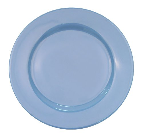 light blue dinner plates - 8
