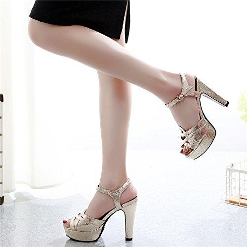 buy popular 85d5c 9578e GTVERNH-bocca di pesce scarpe col tacco alto femmina volgare volgare  volgare sandali scarpe uno spessore di dodici centimetri una fibbia sottile  ed elegante ...