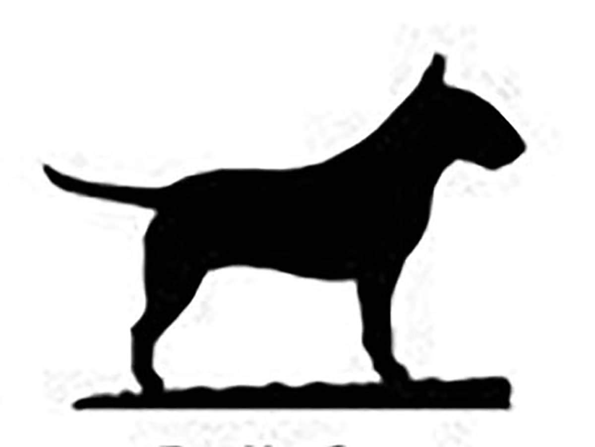 Car-Pets Ltd Bull Terrier Dog Lovers Gift - LETTER RACK - A quality hand made Letter Rack - Ironwork Silhouette Dog Breed Letter Rack Quality Home Products