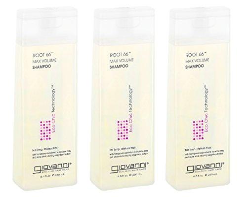 GIOVANNI COSMETICS - Eco Chic ROOT 66 Max Volume Shampoo- For Thin/Fine Hair- (8.5 Ounce) 3 (Eco Iodine)