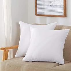 Acanva PI-ACV12X20-2P Pillow Insert/12 L...