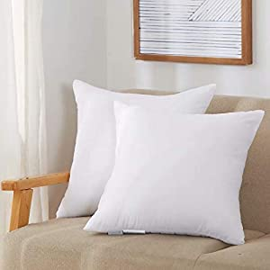 Acanva Throw Pillow Inserts Soft Couch Stuffer Hypoallergenic Polyester Square Form Washable Cushion Euro Sham Filler, 12×20-2P, White, 2 Pack
