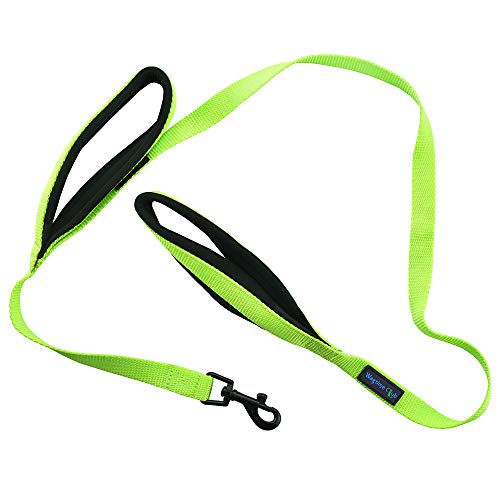 Wagtime Club Soft and Thick Double Handle Premium Nylon 4FT x 3/4 in Leash - Dual Neoprene Padded Handles for Ultimate Comfort and Control - for Medium to Large Dogs (Neon Green)