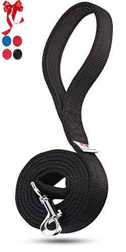 PetsLovers 2-Layer Dog Leash - Sturdy Nylon Strap, Padded Handle - 6 Feet Long, 1 Inch -