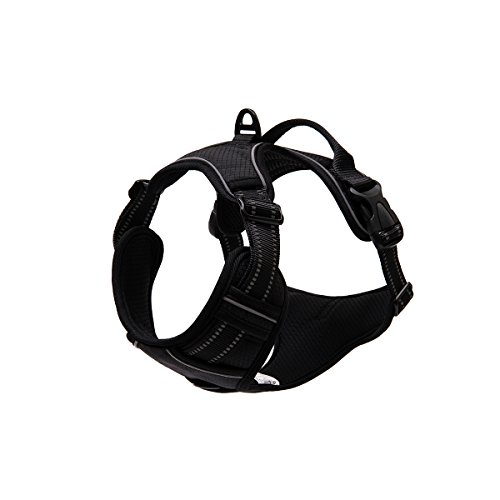 Amazon Com No Pull Dog Harness Adjustable Dog Harness With Handle