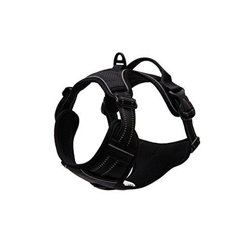 Amazon Com No Pull Dog Harness Adjustable Dog Harness With Handle