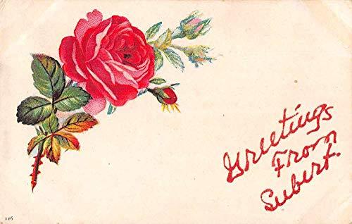 Seebert West Virginia Greetings Red Rose Vintage Postcard JD228133