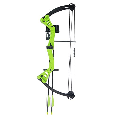 Archery Draw Weight - 7