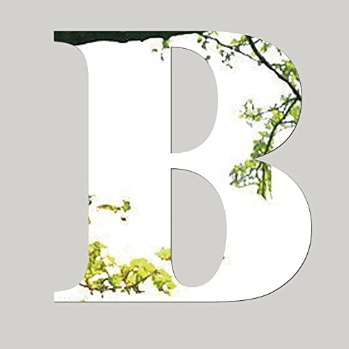 Acrylic Mirror Wall Stickers, E-Scenery 26 Letters (A~Z) Peel and Stick DIY 3D Wall Decals Mural Art Wallpaper for Kids Room Home Nursery Party Window Decor, Silver (B) ()