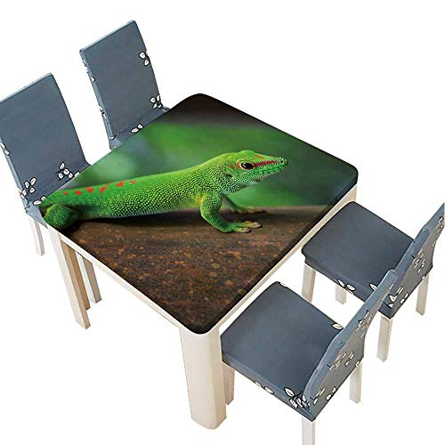 Day Gecko Lined - PINAFORE Solid Tablecloth Madagascar Day Gecko Table Cover 69 x 69 INCH (Elastic Edge)
