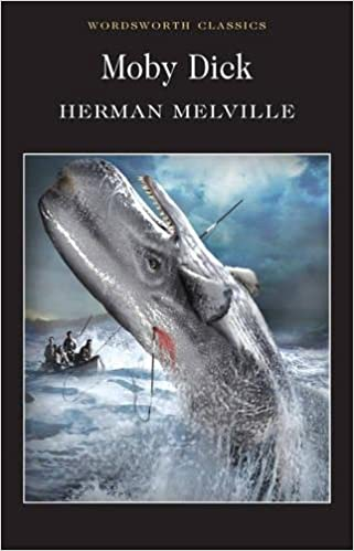 Criticism over moby dick
