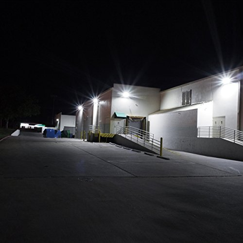 Lighting Ever Super Bright Outdoor LED Floodlight Deals