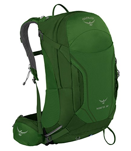 Osprey 10000162 P Kestrel 32 Backpack