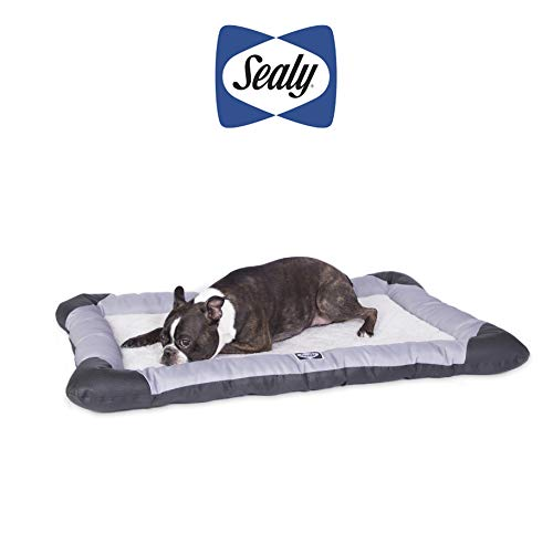 Sealy Dog Bed Sealy Quilted Memory Foam Heavy Duty Crate Pad Gray/Black, Medium 24' x 36'