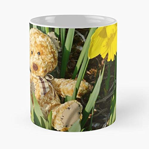 Teddy Bear Toy Spring Daffodils - Coffee Mugs Unique Ceramic Novelty Cup Best Gift ()