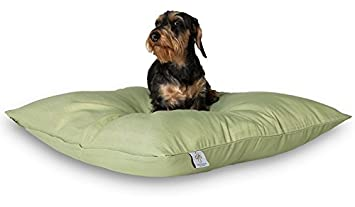 Darling Little Place Cama para Perros, 80 x 80 cm, Grass Solid: Amazon.es: Productos para mascotas