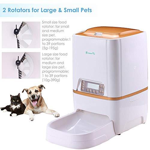 Buy programmable dog feeder