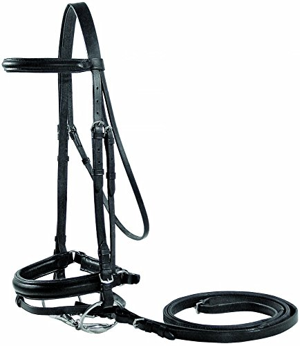 - Paris Tack Opulent Series Classic Dressage Bridle with Crank Noseband and Flash Attachment, Black, Oversize