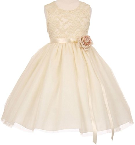 Ivory Embroidered Taffeta Dress - 5