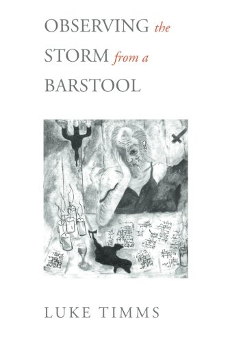 Read Online Observing The Storm From A Barstool pdf epub