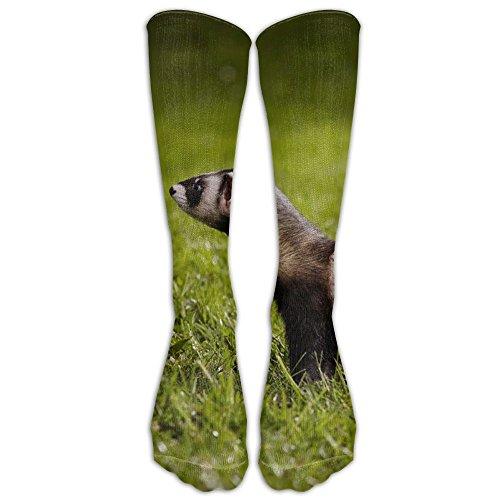 18c7ccba6504f Novelty Casual Long Socks Ferrets Make Me Happy Cute Pet Ferret Patterned  Comfortable Warmer Stockings 1