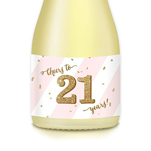CHEERS TO 21 YEARS! Woman's 21st Twenty-First Adult Birthday Party Gift Ideas, Decorations, Set of 20 Mini Champagne & Wine Bottle Labels, Pink & Gold Decals Celebrate B-day Daughter, Sister, Fiancée