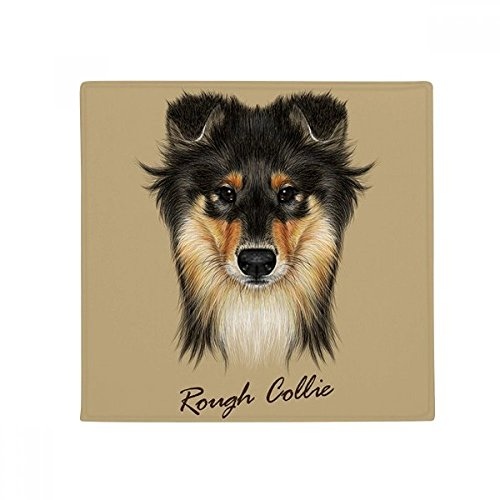 Long-haired Rough Collie Pet Animal Anti-slip Floor Pet Mat Square Home Kitchen Door 80cm Gift (Haired Collie Rough)