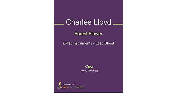 Forest Flower - B-flat Instruments