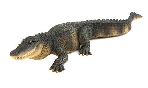 Safari Ltd. Alligator XL – Realistic Hand Painted Toy Figurine Model – Quality Construction from Phthalate, Lead and BPA Free Materials – For Ages 3 and Up -