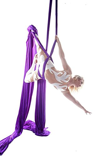 Dasking Premium Aerial Silks Equipment - Safe Deluxe Aerial Kit (Dark Purple)