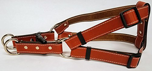 Leather Dog Harness Stitched 1