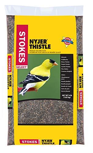 Stokes Nyjer Thistle Select Bird Seed Bag, 4 lb