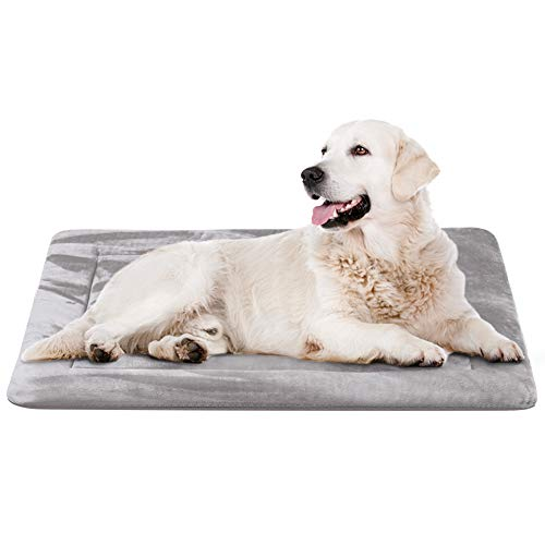 JoicyCo Dog Beds for Medium Dogs Crate Bed Mat 35 in- Washable Anti-Slip Soft Fleece Mattress Kennel Pads Luxury Color,Grey M