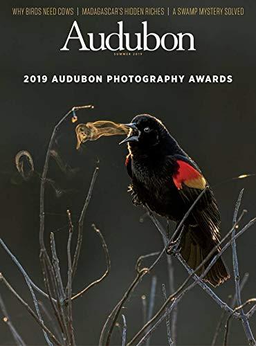 (Audubon Magazine )
