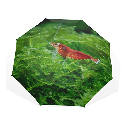 Travel Umbrella Crystal Red Shrimp Standing On Aquatic Moss Anti Uv Compact 3 Fold Art Lightweight Foldable Umbrellas(outside Printing) Windproof Rain Sun Protection Umbrellas For Women Girls Kids ()